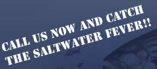 CALL US NOW AND CATCH